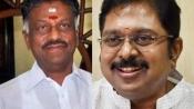 As Stalin seeks floor test in TN, TTV carts MLAs to resort in Puducherry