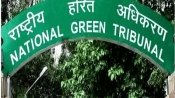 NGT will decide on Sterlite Copper at Tuticorin