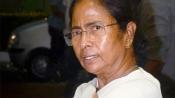 Rahul's unwillingness for alliance led to Tripura result: Mamata Banerjee