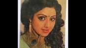 Sridevi: Rare, old and unseen photos of Bollywood actress 'Chandini'