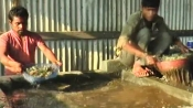 Learn from Manipur's father-son duo to recycle plastic to save environment and earn some profit