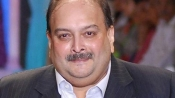 Mehul Choksi 'fugitive and absconder', probe agency tells Bombay HC