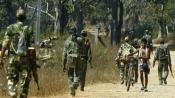 Jharkhand: Five Naxals killed in encounter