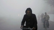 Weather forecast for Jan 1: Cold conditions refuse to subside in North India; rest to remain dry