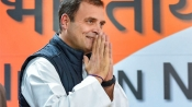Rahul to decide on CMs of MP, Rajasthan and Chhattisgarh on Thursday