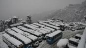 2 killed in J&K avalanche as rain, snowfall lash north India