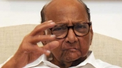 'Remarks on father insensitive': Manohar Parrikar's son to Sharad Pawar