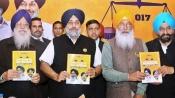 Lok Sabha elections in Punjab: Akali Dal fields Parminder Dhindsa from Sangrur
