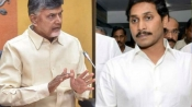 Andhra Pradesh Lok Sabha Election 2019 results: Full list of winners