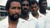 Windies legends on the revival of Caribbean cricket