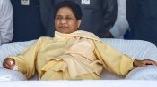 Mayawati slams BJP, says Muslims being targeted in Uttar Pradesh, framed in false cases
