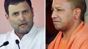 'Behaving foolishly': Rahul Gandhi slams Adityanath over arrests of journalists