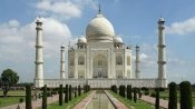 Insects' excreta damage Taj Mahal, leaves marble with green, black stains