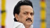 MK Stalin urges Modi to make Tamil official language after PM's oldest-language remark