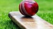 Kerala: 12-year-old school boy dies after flying makeshift cricket bat hits his head