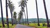 This Goa's Parra village suspends 'photography tax' imposed on Tourists for clicking photos