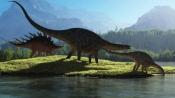 How a secret mission saved Australia's 'dinosaur trees' from bushfires