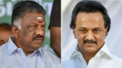 VIP Security cover of O Panneerselvam, MK Stalin withdrawn