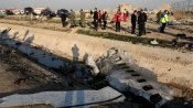 Ukraine passenger plane was struck by two missiles: Reports
