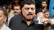 Tigers should be punished for eating cows says this NCP MLA
