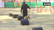 India's first canine training centre comes up at Attari; Dogs to be trained on narcotics detection