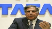 'Grieved and shocked': Ratan Tata shares moving post on pregnant elephant killed in Kerala