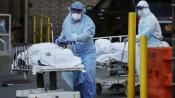 Rise in coronavirus cases expected to stabilise soon: Niti Aayog member