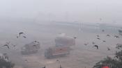 Air quality in Delhi stands at 'severe' despite light rains