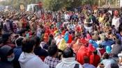 New York, Sydney, London: Farmer protests set to go global