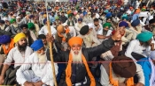 Farmers' Protest: US lawmakers back farmers protesting against new farm laws in India