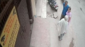 Caught on Camera: 76-year-old woman dies on spot after being slapped by son in Dwarka