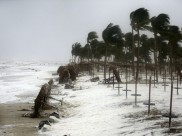 Cyclonic storm to hit parts of Odisha and Andhra tonight, IMD issues warning