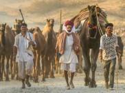 Annual Pushkar Fair to begin tomorrow