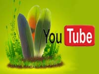 YouTube and Green Parrot Pictures logos