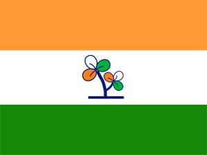 Trinamool Congress flag