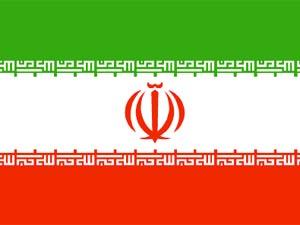 Tran flag