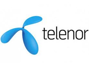Foreign telecos to fight 2G ban verdict