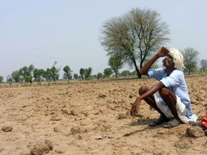 Drought-hit farmers
