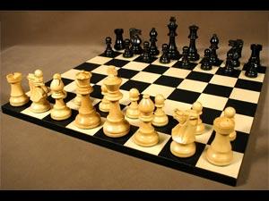 Chess player wins Ekalavya Puraskar