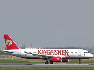 kingfisher-flight