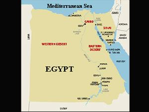 Egypt: 48 kids killed as train rams bus