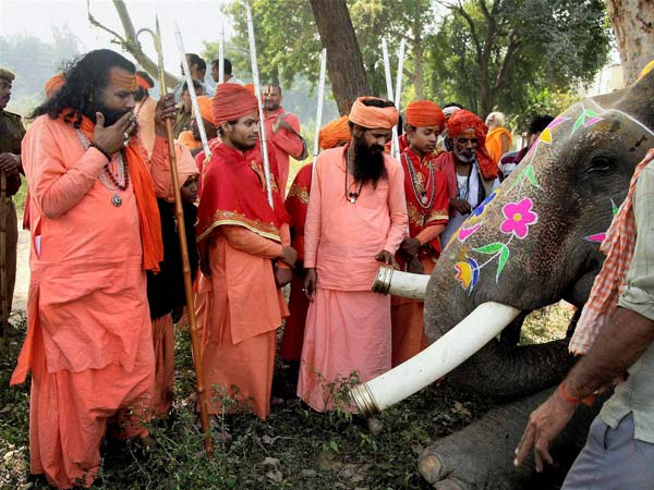 Juna Akhada Sadhus take a look at an elephant