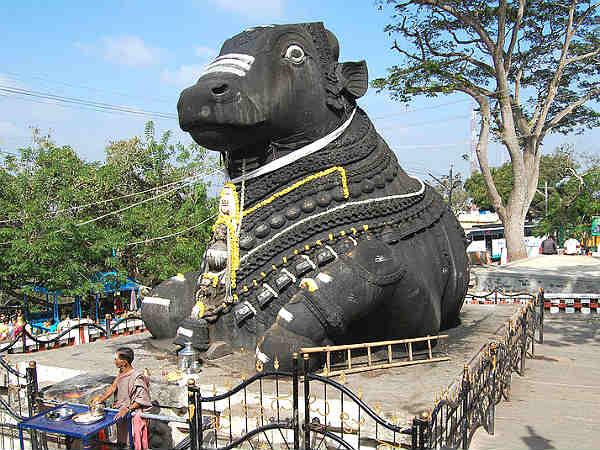 Mysore Nandi Statue