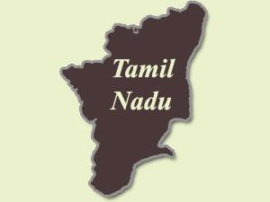 TN: Lizard in meal, school kids fall ill