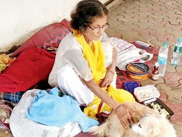 Mumbai: Ex-editor back on streets