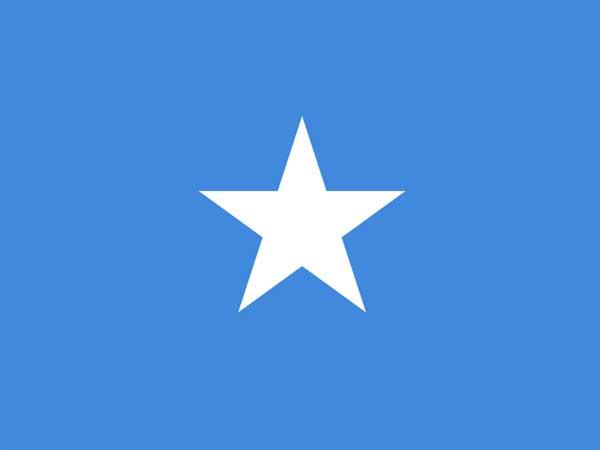 Somalia to work on war against terror