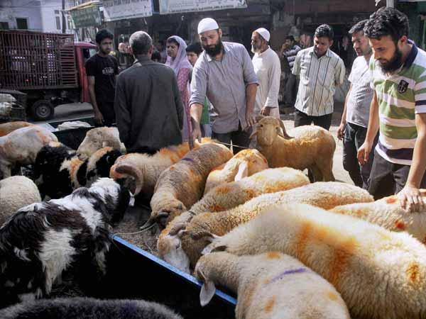 Eid-ul-Azha celebrated in Andhra