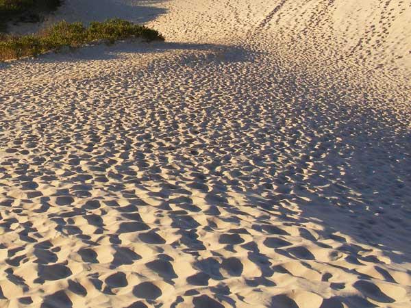 Sand mining: Officials begin inspections