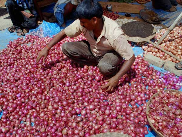 Govt's onion import plans on hold