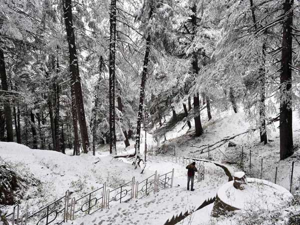 Himachal Pradesh receives heavy snow